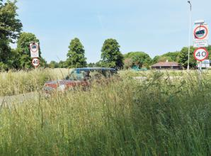 Viewpoint: Are the grass verges in Maidenhead growing too high?