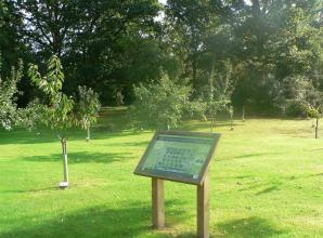 Burnham Beeches Rotary to host event celebrating 10 years of Community Orchard