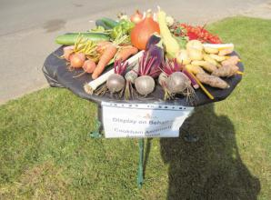 Flower and produce show gives Cookham villagers chance to 'talk again'