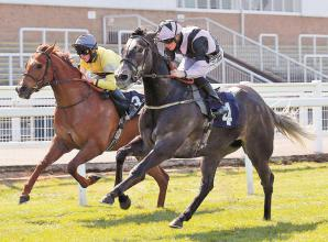 Probert rides two winners on day for the David's at Windsor