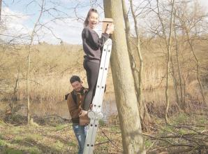 Maidenhead kids and wildlife groups build nest boxes for Battlemead